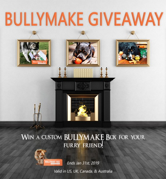 Win a Customized BULLYMAKE Box
