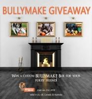 Win a Customized BULLYMAKE Box