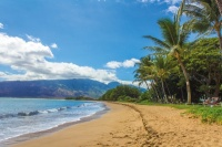 Win a free trip to Hawaii or any country on Earth