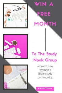 Win a Month of the Study Nook Group
