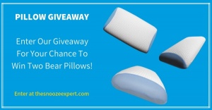 Bear Pillow Giveaway
